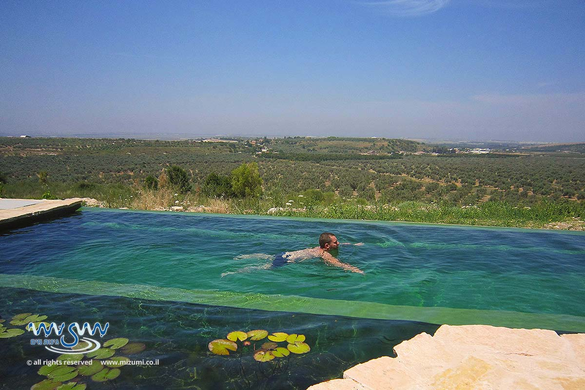 בריכת שחייה טבעית