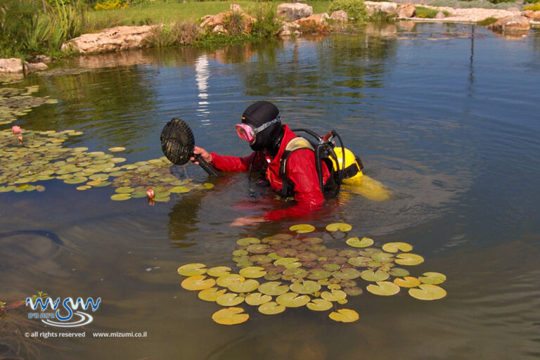 אגם טבעי אקולוגי